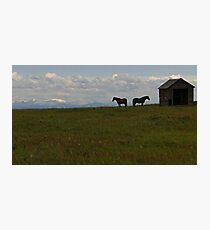 Alberta Panorama - God's Country Photographic Print