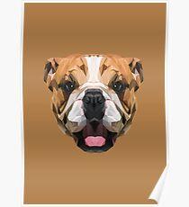 English Bulldog low poly. Poster