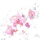 « Fleurs d'orchidée à l'aquarelle » par cindybarillet