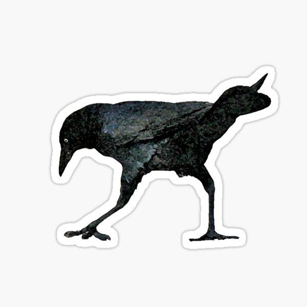 Crow Search Sticker