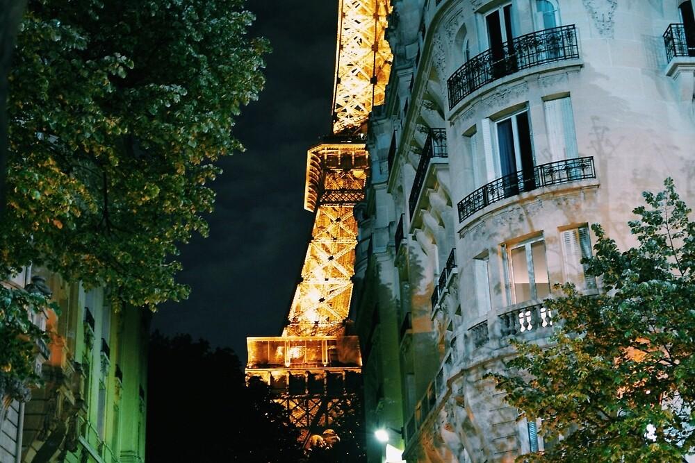 The Parisian Beauty by amarsdiary