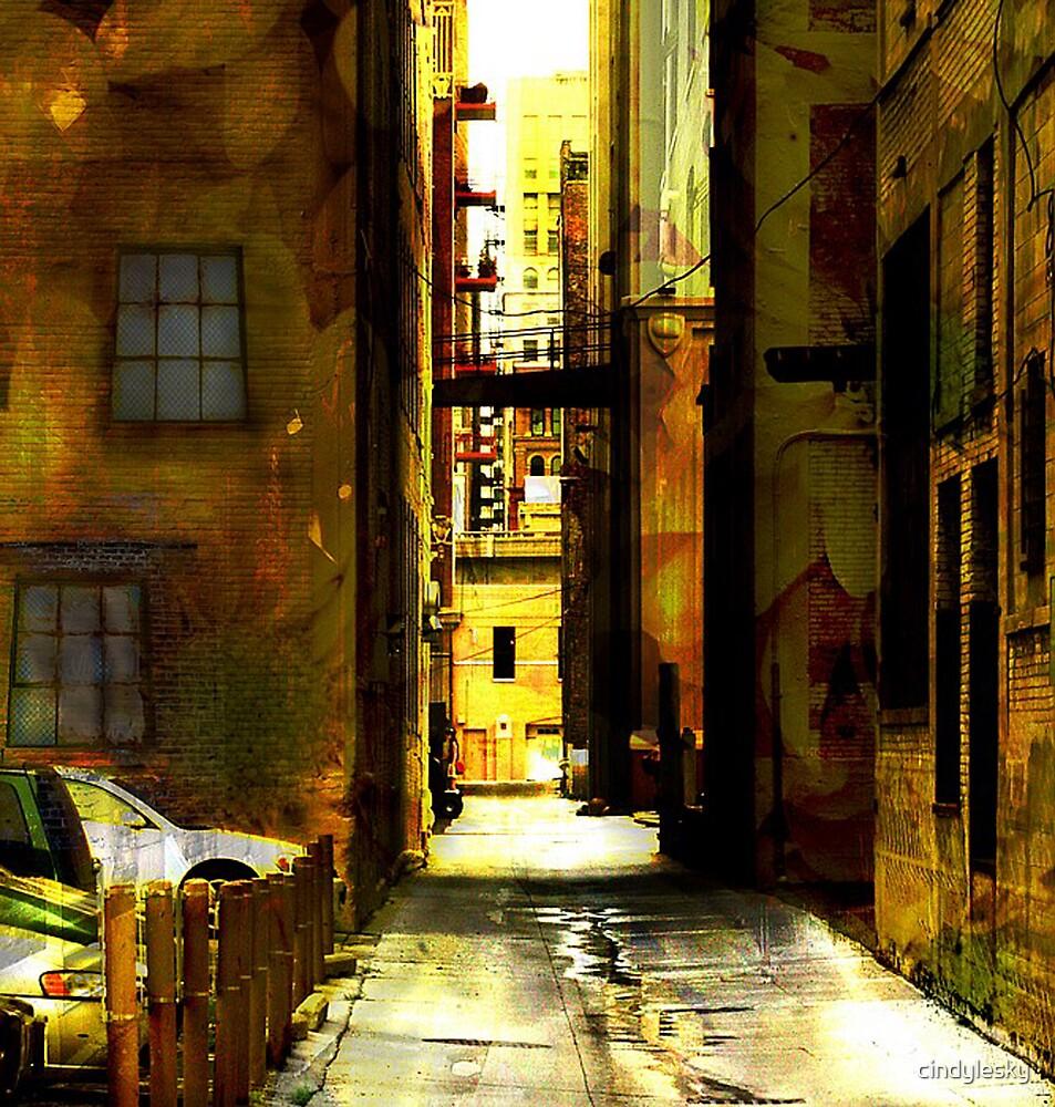 Flower Alley by cindylesky
