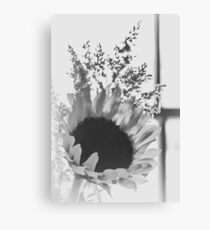 Black And White Backlight Canvas Print