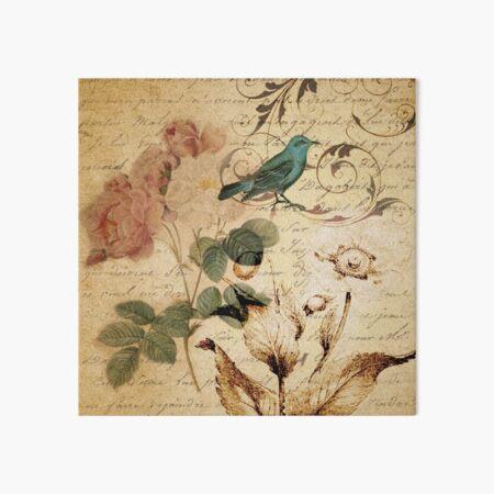 modern vintage rose bird paris french botanical art Art Board Print