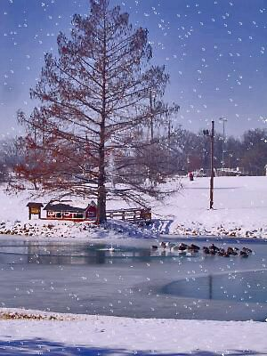 city park in snow by candy