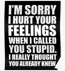I'M SORRY I HURT YOUR FEELINGS WHEN I CALLED YOU STUPID. I REALLY THOUGHT YOU ALREADY KNEW. Poster