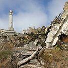 Alcatraz Ruins by Patricia Montgomery