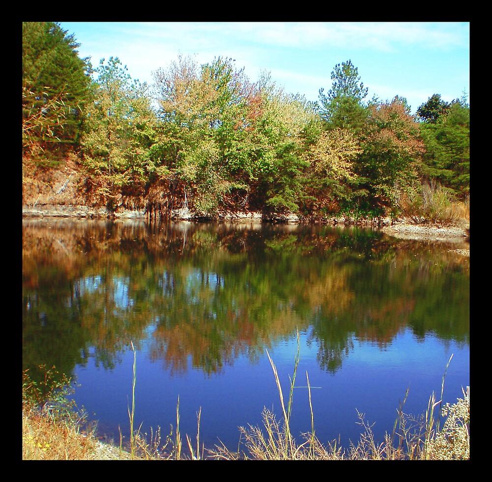 Reflections II by MaryHelen