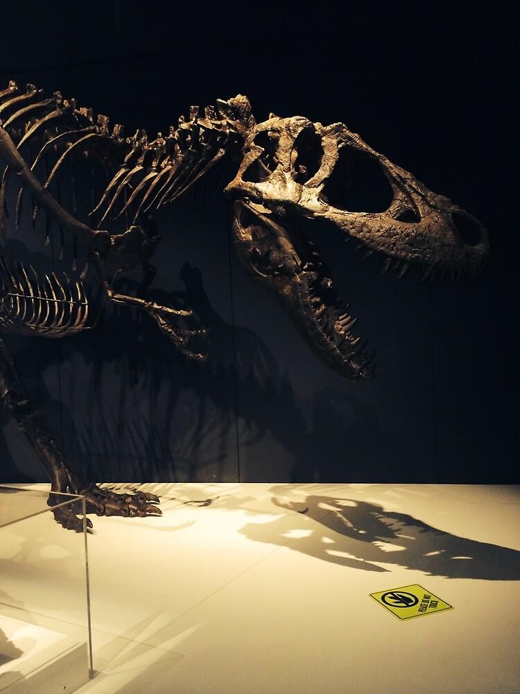 Dino Bones by Chantelle Ashton