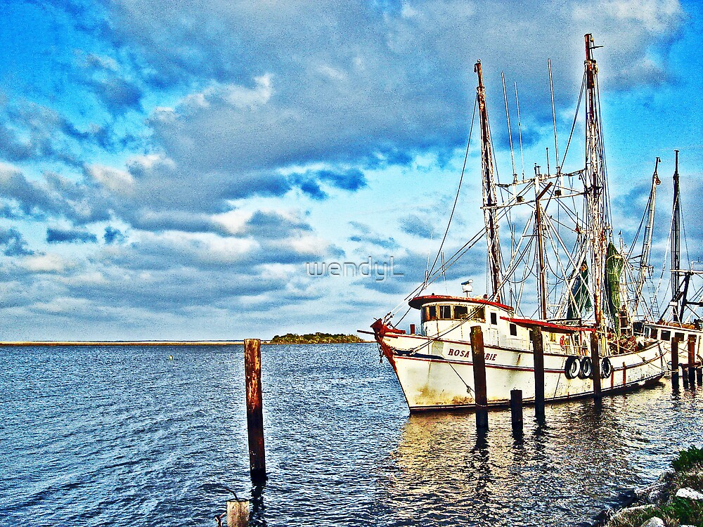 A fisherman's Paradise by wendyL