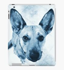 Carolina Blue Pup iPad Case/Skin
