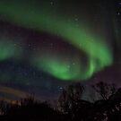 Aurora borealis by Dominika Aniola