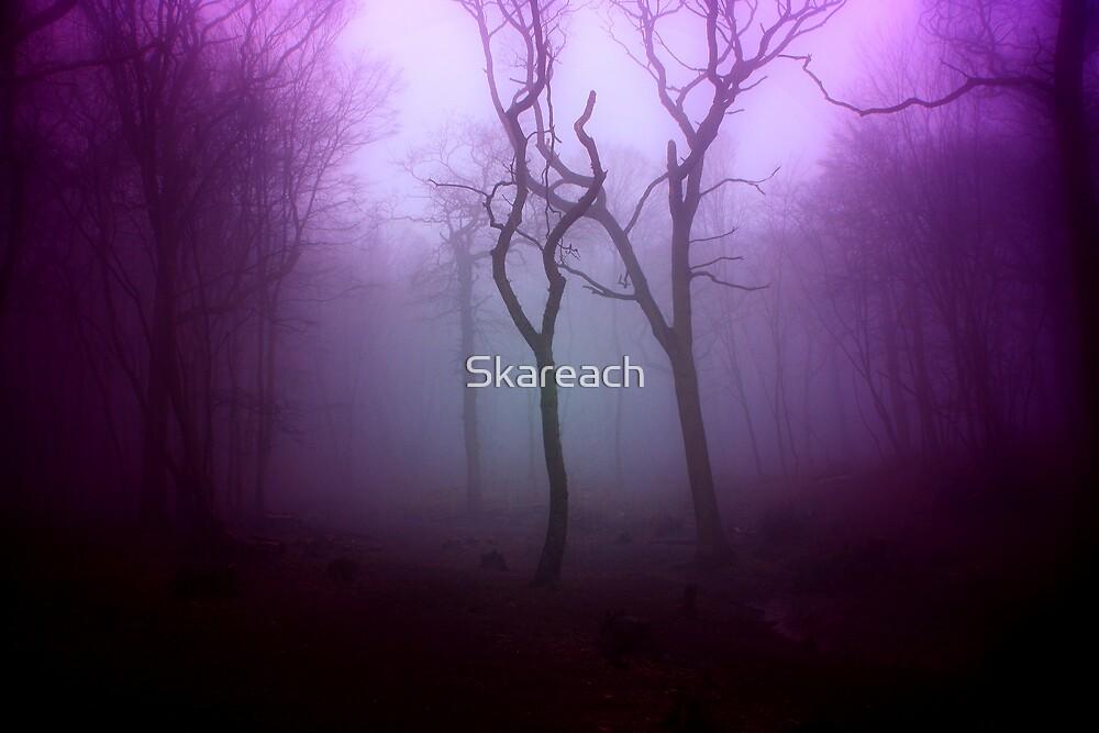 D E A D  W O O D by Skareach