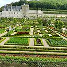 Chateau Villandry. Loire Valley by hans p olsen