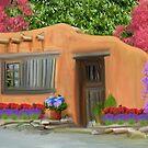 Adobe Home. by Walter Colvin