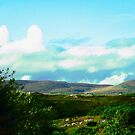 The view from Corcgreggan's Mill, Donegal, Ireland by Shulie1