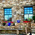 Flower Pots at Corcgreggan's Mill, Donegal, Ireland by Shulie1