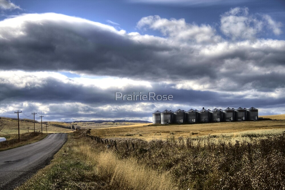 Prairie Road by PrairieRose