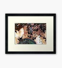 Southern Solstice Framed Print