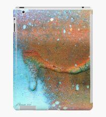 Drip-Dried iPad Case/Skin