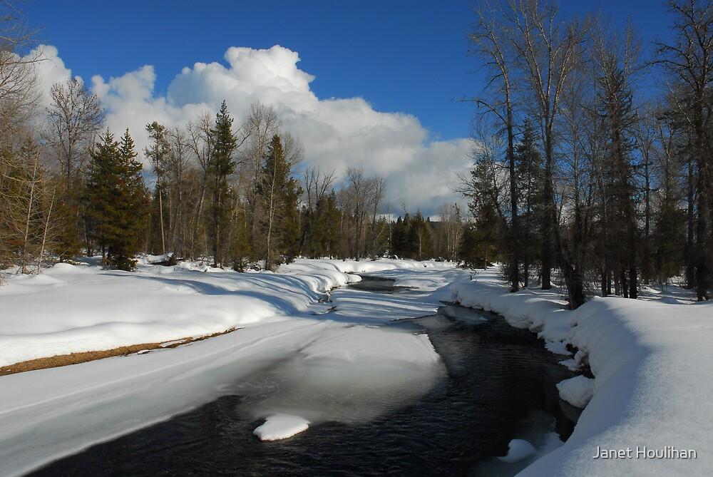 Winter on Lake Fork Creek by Janet Houlihan