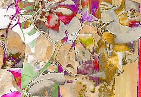summer1 by Gladys Saravia