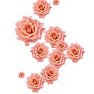 A scatter of pink roses! by Elaine Bawden