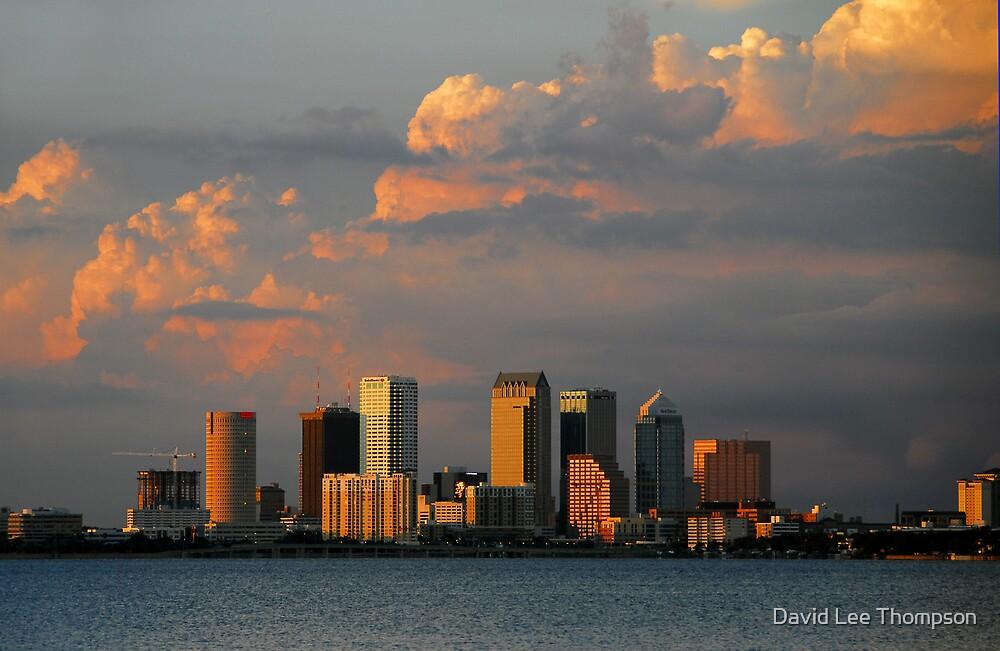 "Summer Skyline, Tampa Florida"" by David Lee Thompson"