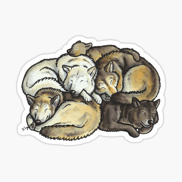 Sleeping pile of grey wolves Sticker