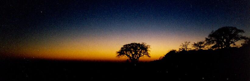 Kubu Island - Mgadikgadi - Dawn by Paul Lindenberg