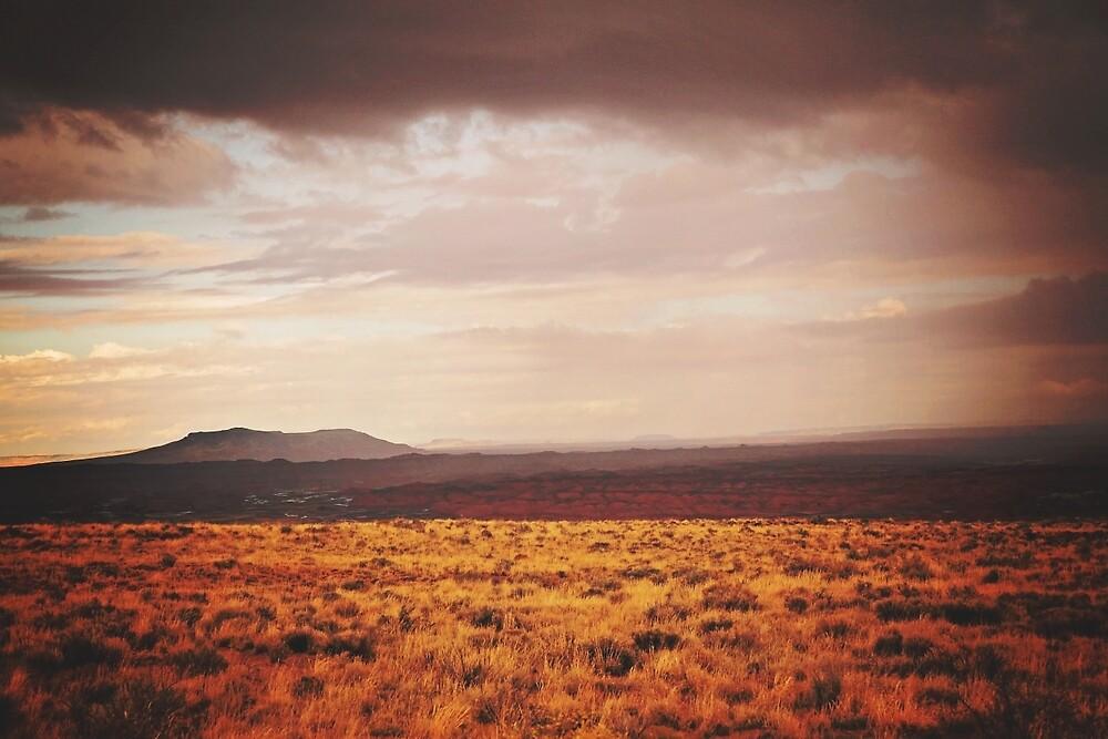 Desert Storm by rambleandrevel