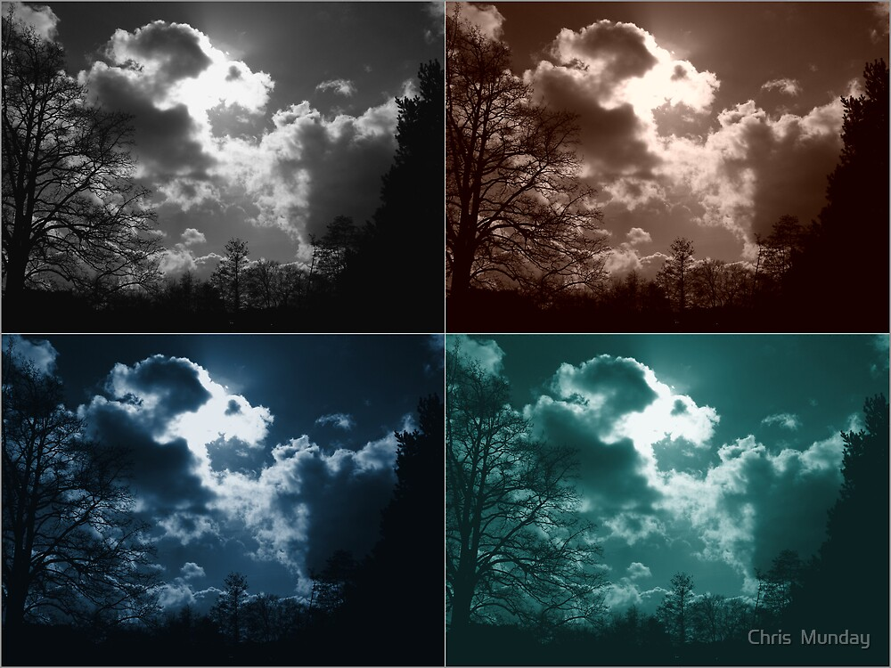 SkyScape Mania by Chris  Munday