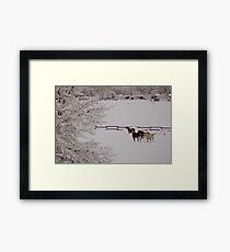Winter Wonderland w/horses Framed Print