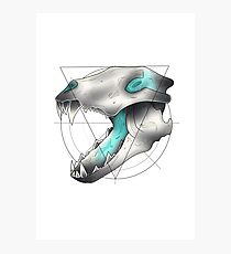 Neotraditional Wolf Skull Photographic Print