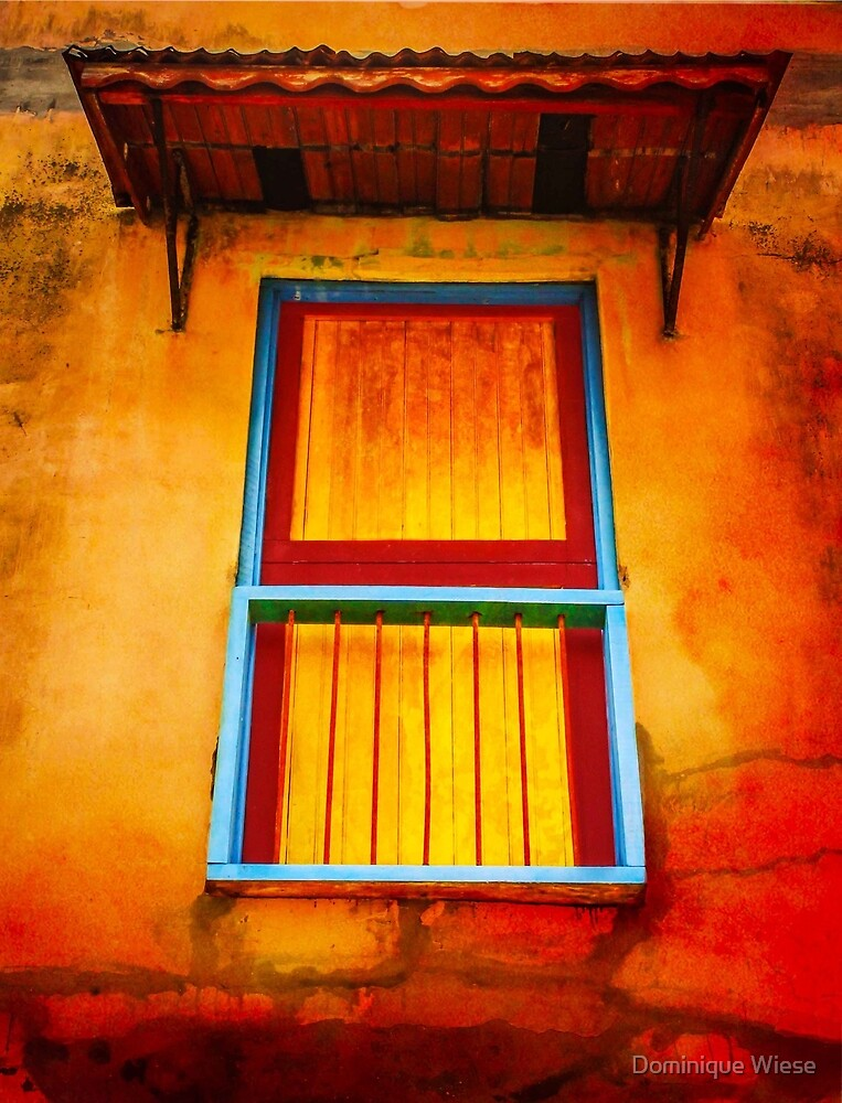 Colorful Old Door by Dominique Wiese