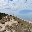 Dune Beach  by caybeach