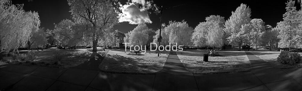 "Salem Willows 3 Infrared ""Feeding Gulls"" by Troy Dodds"