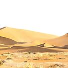Desert sands by cs-cookie