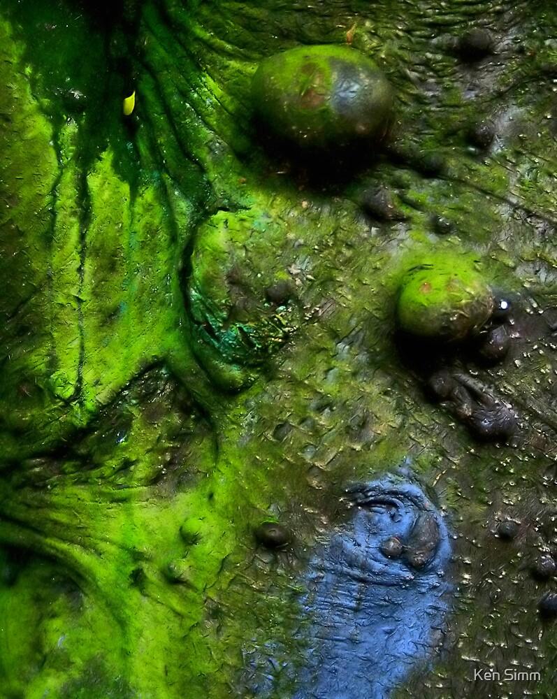 The Plague Tree by Kenart