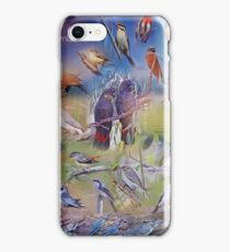 Salt Caves Bird Information Sign iPhone Case/Skin