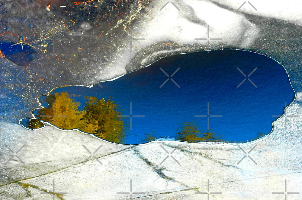 Oasis in the Ice by christiane