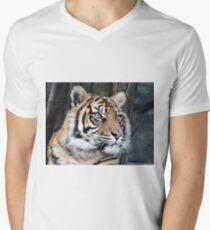 Tiger 02 T-Shirt