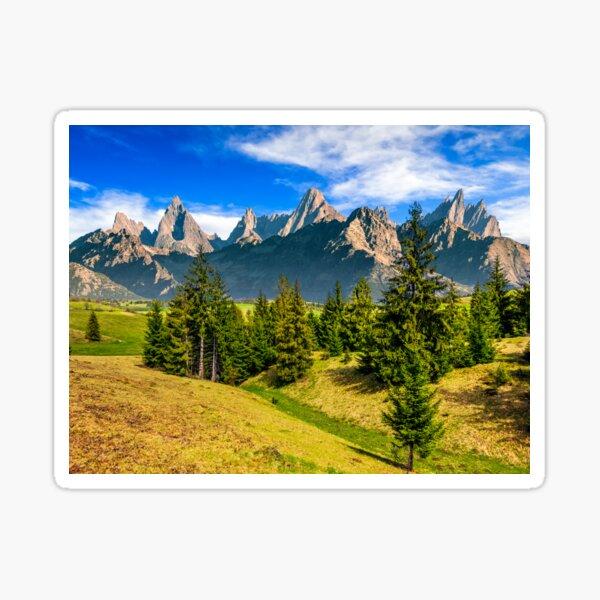 spruce forest on grassy hillside in tatras Sticker