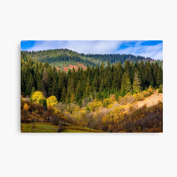 mountain rural area in autumn Canvas Print