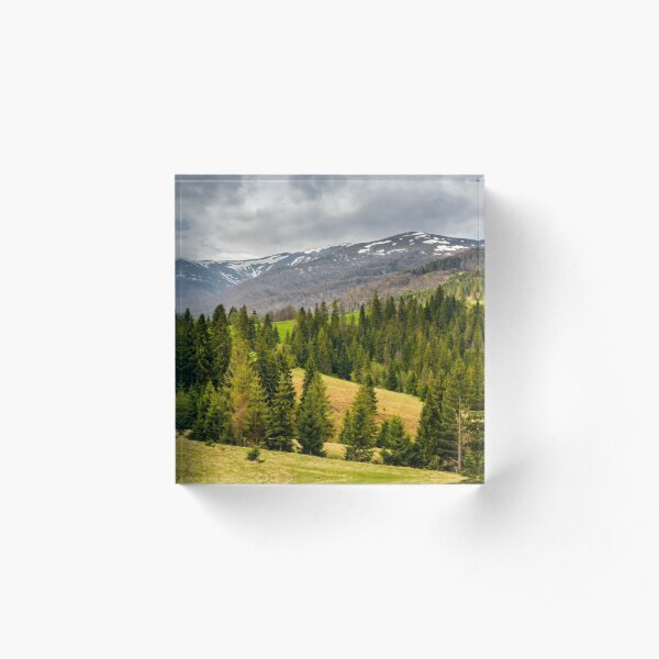 snowy tops of carpathians in springtime Acrylic Block
