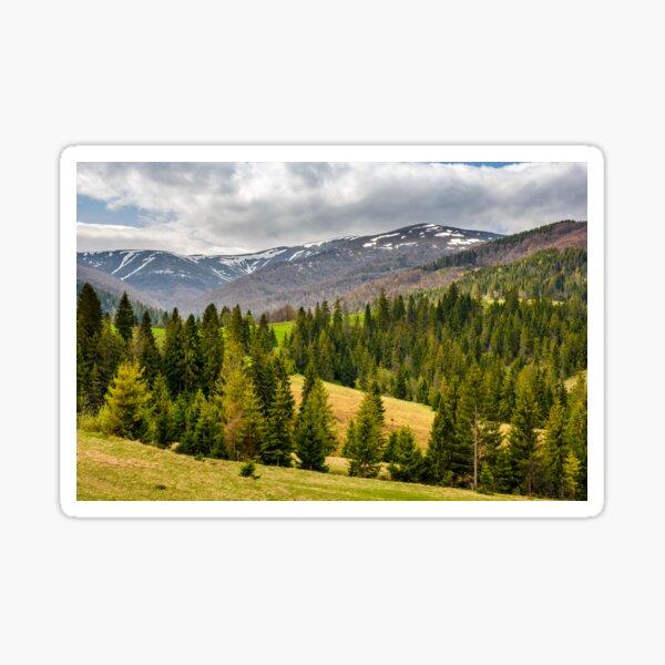 snowy tops of carpathians in springtime Sticker