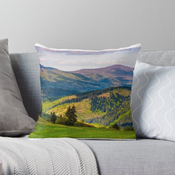 rural fields with fence on hills of Carpathians Throw Pillow