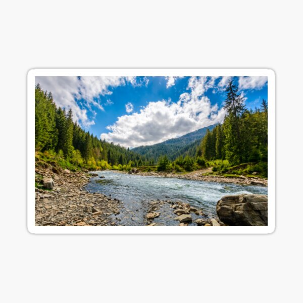 River among the forest in picturesque mountains in springtime Sticker