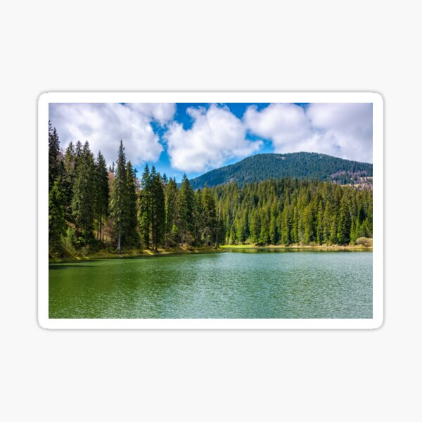 mountain lake Synevir among the forest Sticker