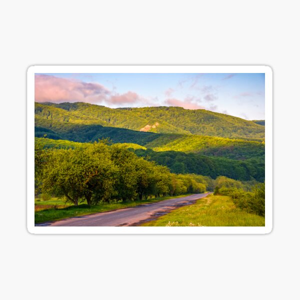 Countryside road in mountains at sunrise Sticker